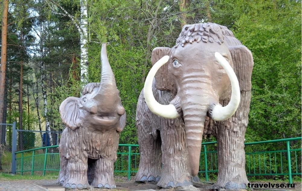 Красноярский парк флоры и фауны «Роев ручей»